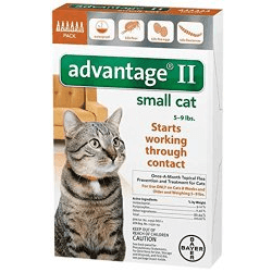 flea control for kittens