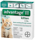 flea control for kittens